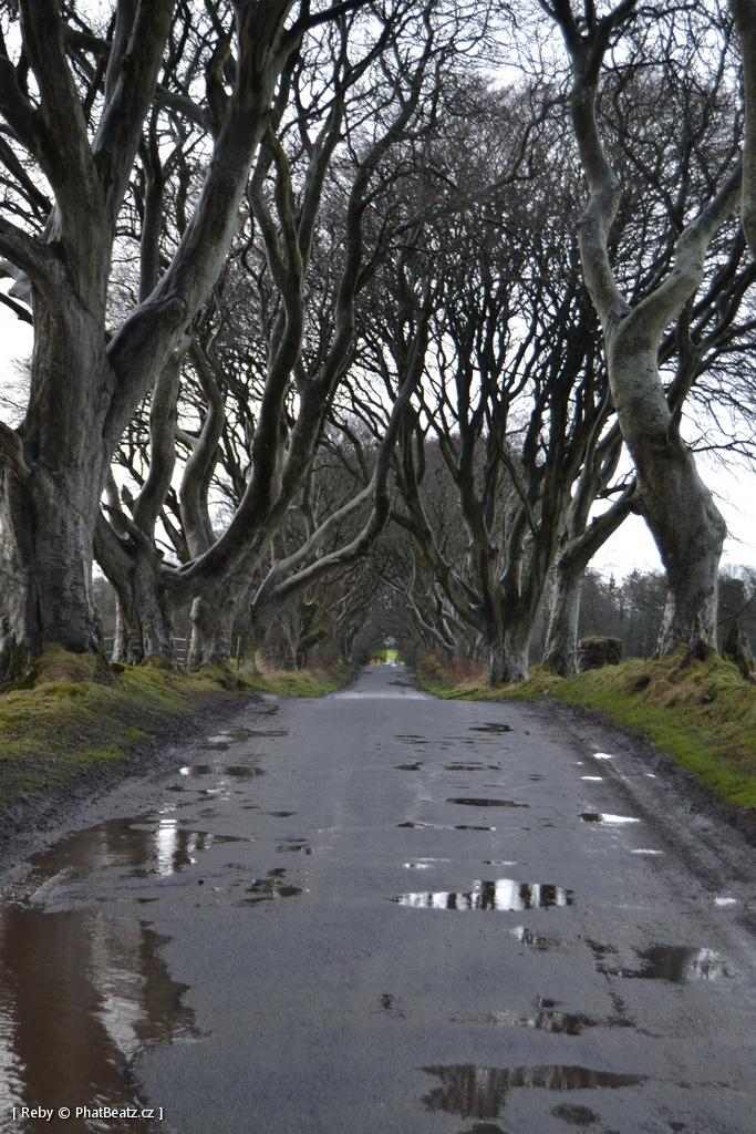 150121-25_Irsko_044