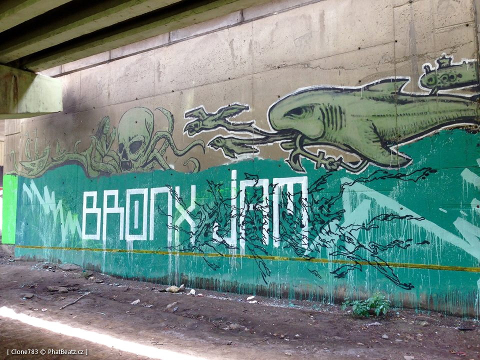 150711_BronxJam_10