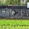 150906_Yogyakarta_36
