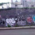 1805-07_Bronx_TUPS_011
