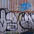 1805-07_Bronx_TUPS_013
