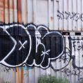 1805-07_Bronx_TUPS_014
