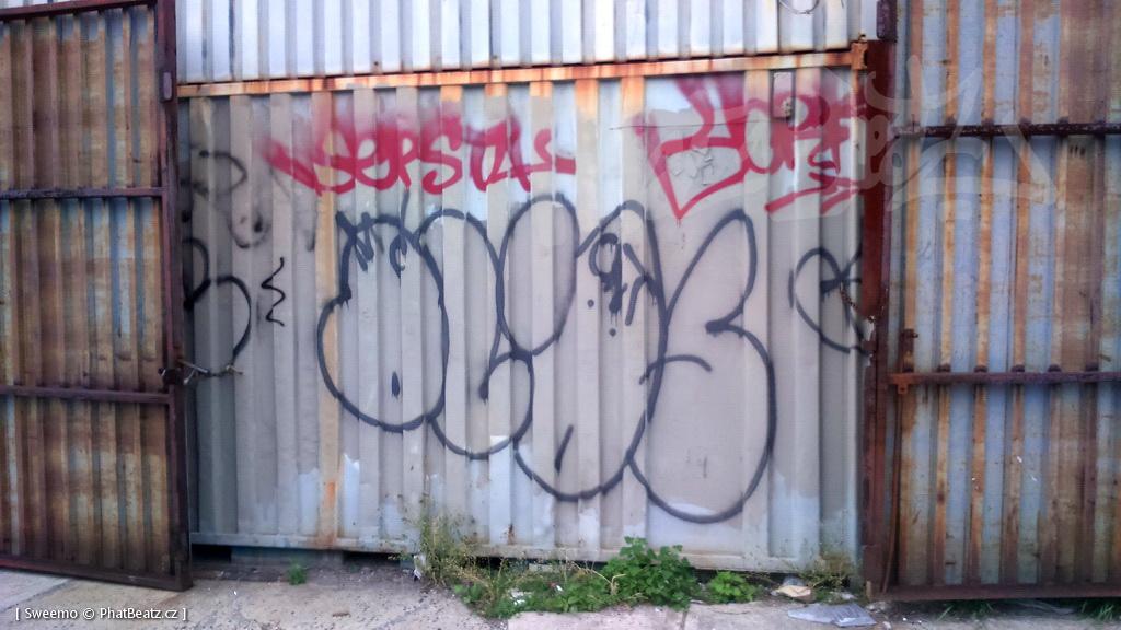 1805-07_Bronx_TUPS_018