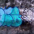 1805-07_Bronx_TUPS_040