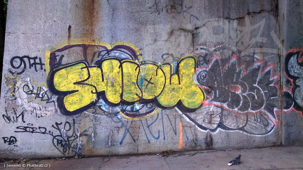 1805-07_Bronx_TUPS_050