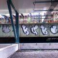 1805-07_Bronx_TUPS_056