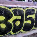 1805-07_Bronx_TUPS_071