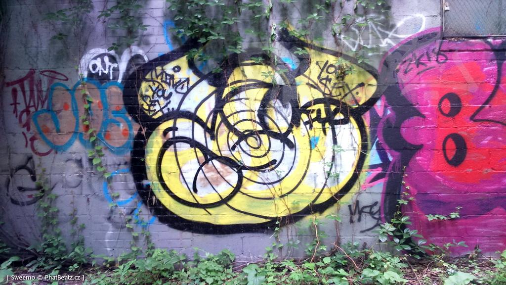 1805-07_Bronx_TUPS_086