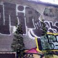 1805-07_Bronx_TUPS_089