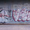 1805-07_Bronx_TUPS_100