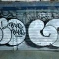 1805-07_Bronx_TUPS_133