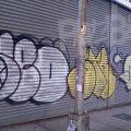 1805-07_Bronx_TUPS_168