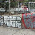 1805-07_Bronx_TUPS_200