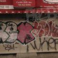 1805-07_Bronx_TUPS_201