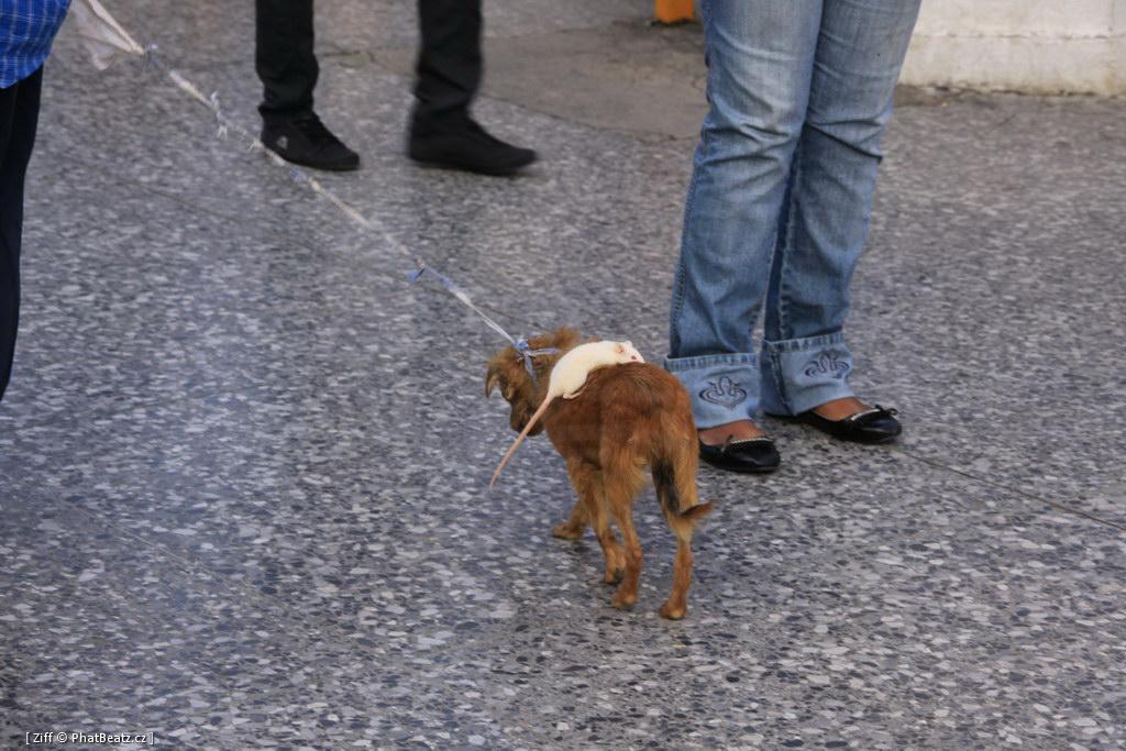 201211_CUBA_080