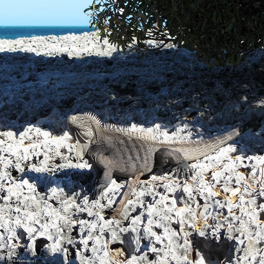 201211_CUBA_116