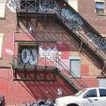 Brooklyn_050