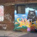 Brooklyn_145