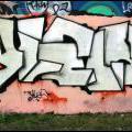 CITHE_YLES_DIZE_072