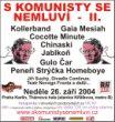 01komunisti2004.JPG